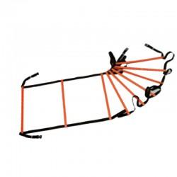 Scaletta agility 9 pioli